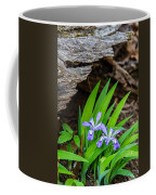 Woodland Dwarf Iris Wildflowers Coffee Mug