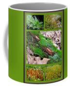 Woodland Mosses Coffee Mug