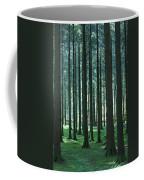 Woodland Scene In Gougane Barra Forest Coffee Mug