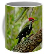 Woodpecker On A Limb Coffee Mug