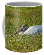 Woodstork Lazing In The Park Coffee Mug