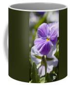 Woodward Pansy Coffee Mug