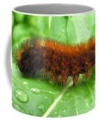 Wooly Bear  Coffee Mug
