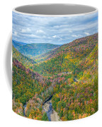 Worlds End State Park Lookout Coffee Mug
