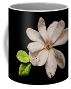 Wounded White Magnolia Wide Version Coffee Mug