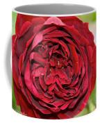 Wrapped Red Coffee Mug