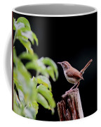Wren - Carolina Wren - Bird Coffee Mug