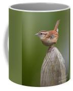 Wren Chirping Coffee Mug