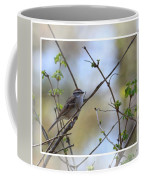 Wren In Spring 2013 Coffee Mug