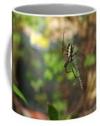 Writing Spider Coffee Mug