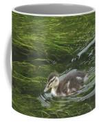 Wye Dale Duckling Coffee Mug