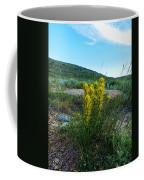 Wyoming Wildflowers Indian Paintflowers Coffee Mug