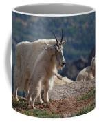 Xx's And Oo's Coffee Mug