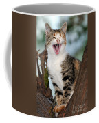Yawning Cat Coffee Mug