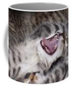 Yawning Kitten Coffee Mug