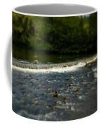 Ye Olde River Wye Coffee Mug