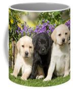 Yellow And Black Labrador Puppies Coffee Mug