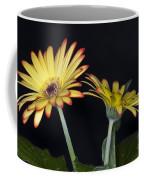 Yellow And Orange Gerbera 2 Coffee Mug
