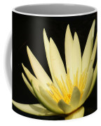 Yellow And Yellow Waterlily...   # Coffee Mug