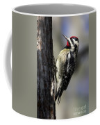 Yellow Bellied Sapsucker Coffee Mug