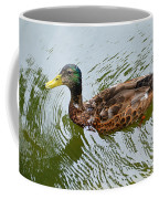 Yellow Billed Duck Coffee Mug