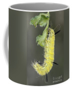 Yellow Caterpillar 1 Coffee Mug