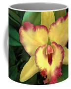 Yellow Cattleya With Red Ruffles Coffee Mug