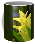 Yellow Cream Tropical Coffee Mug
