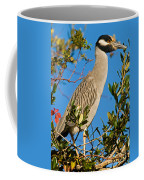 Yellow Crown Night Heron Coffee Mug
