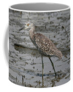 Yellow-crowned Night Heron  Coffee Mug