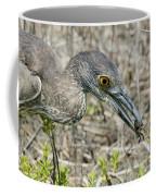 Yellow-crowned Night Heron With Crab Coffee Mug