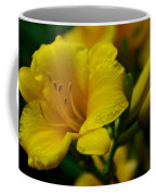 One Day Lily  Coffee Mug