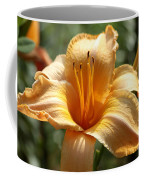 Yellow Day Lily Coffee Mug