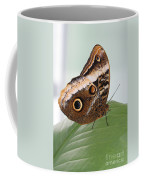 Yellow-edged Giant Owl Butterfly #3 Coffee Mug