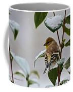 Goldfinch On Branch Coffee Mug