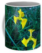 Yellow Flag Iris Coffee Mug