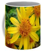 Yellow Flash Coffee Mug