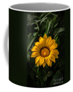 Yellow Gazania Coffee Mug