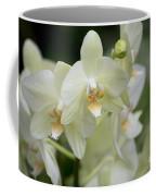 Yellow-green Phalaenopsis 8837 Coffee Mug