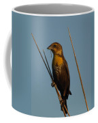 Yellow-headed Blackbird With Dragonfly Coffee Mug