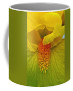 Yellow Iris Beard Coffee Mug