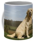 Yellow Labrador Dog Coffee Mug