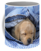 Yellow Labrador Puppy Asleep In Jeans Coffee Mug
