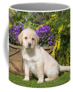 Yellow Labrador Puppy Coffee Mug