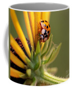 Yellow Lady - 4 Coffee Mug