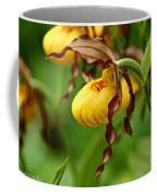 Yellow Lady Slipper Coffee Mug