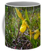 Yellow Lady Slippers Along Emerald Lake Trail In Yoho Np-bc Coffee Mug