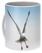 Yellow-legged Gull Coffee Mug