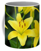 Yellow Lilly 8107 Coffee Mug