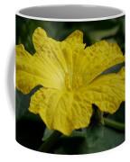 Yellow Luffa Blossom Coffee Mug